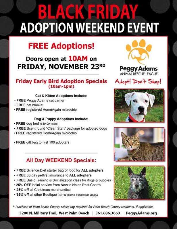 Black Friday Adoption Event