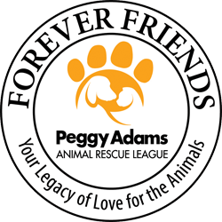 logo-foreverfriends.png