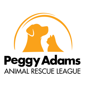 Peggy Adams Animal Rescue League | Home