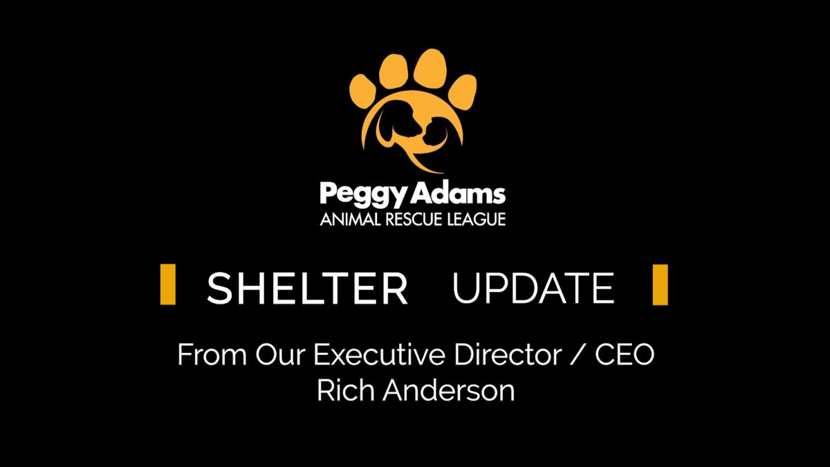 Covid 19 Update Peggy Adams Animal Rescue League