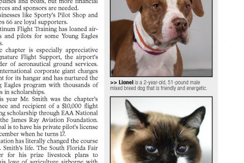 FL Weekly - Pet spotlight - Lionel and Jade