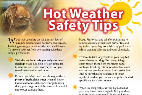 Hot Weather Safety